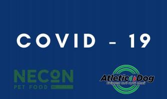 INFO COVID -19