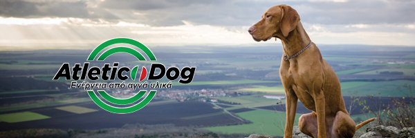 ATLETIC DOG - DOG FOOD