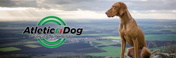ATLETIC DOG - DOG FOOD