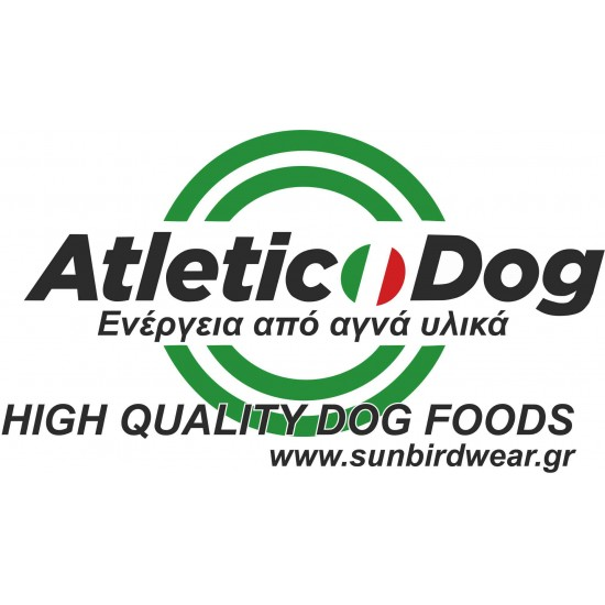 Atletic Dog plus al cavallo