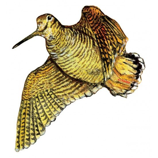 WOODCOCK STICKER